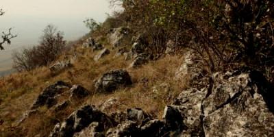 Villány és környéke - Szársomlyó hegy